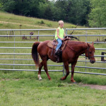 crystal-creek-ranch-horseback-riding-3