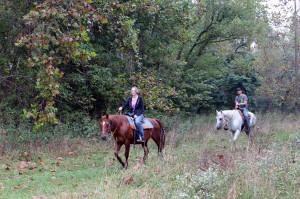 crystal-creek-ranch-horseback-riding-6