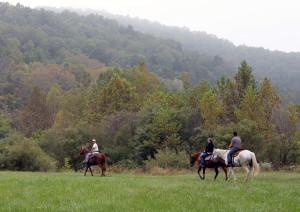 crystal-creek-ranch-horseback-riding-7