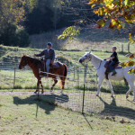 crystal-creek-ranch-horseback-riding-9