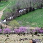 crystal-creek-ranch-ranch-house-4