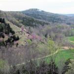 crystal-creek-ranch-retreats-1