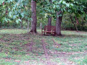 crystal-creek-ranch-retreats-3