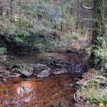 crystal-creek-ranch-retreats-5