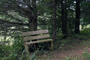 crystal-creek-ranch-spiritual-retreats-8