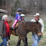 CCR spirit horse 1