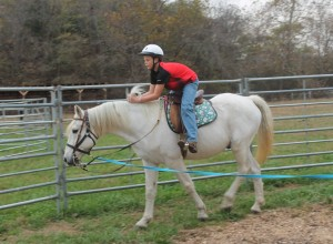 CCR spirit horse 10