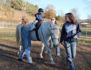 CCR spirit horse 7
