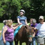 CCR spirit horse 9