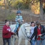 CCR spiriti horse 6